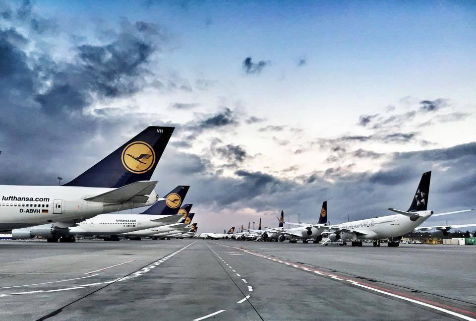 A Lufthansa repülőgépei a frankfurti repülőtéren. (Fotó: Frankfurt Airport)   © AIRportal.hu