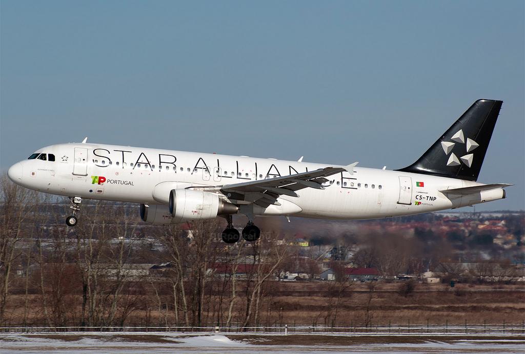 A TAP Star Alliance festésű Airbus A320-as repülőgépe Ferihegyen. (Fotó: AIRportal.hu) | © AIRportal.hu