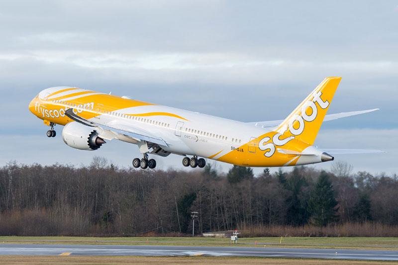 A Scoot egyik Dreamlinere felszállás közben. (Fotó: Boeing Company) | © AIRportal.hu